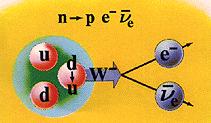 Нейтрино появляется в бета-распаде нейтрона в ядре