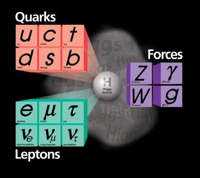 Бозон Хиггса даёт массы кваркам и лептонам