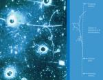Пузырьки показывают след электрона после испускания нейтрального промежуточного бозона