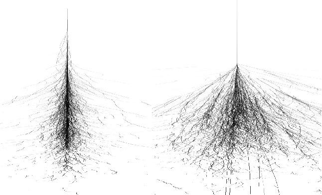 Форма адронного и электромагнитного ливней различны