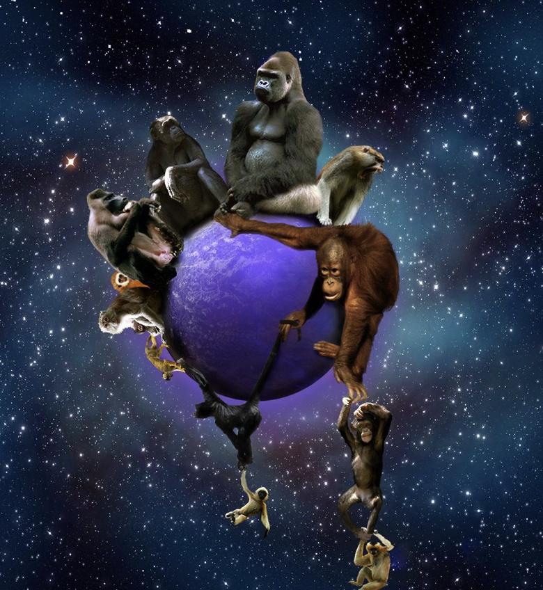 Обстоятельства не помешали Кеплеру разобраться в движении планет